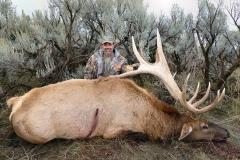Mike-363-elk-or