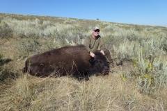 Spohn yrlg bison